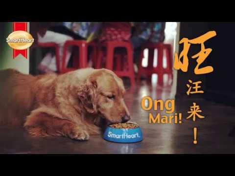 SmartHeart CNY 2018 : Ong Ong Mari with SmartHeart